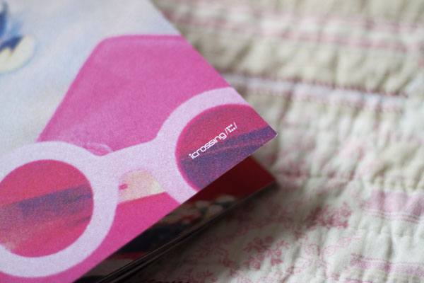 fashion blogger book