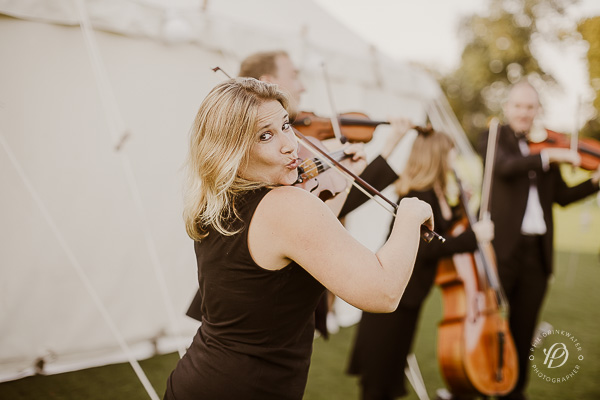 wedding entertainment string quartet